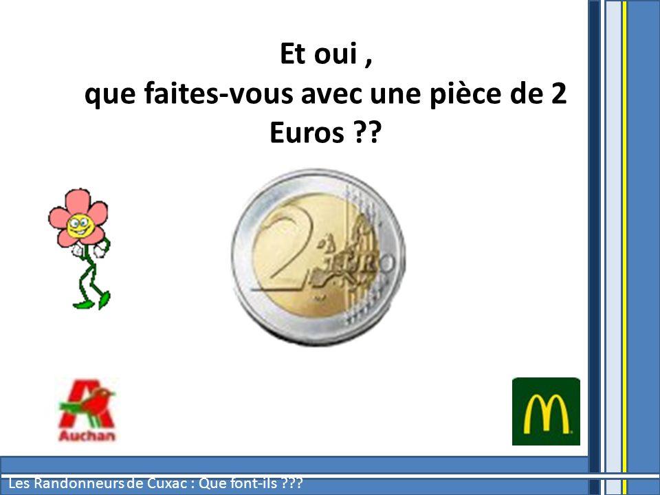 que faites-vous avec une pièce de 2 Euros