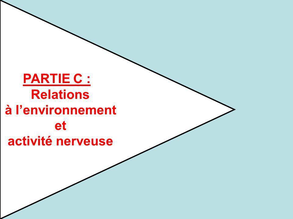 PARTIE C : Relations à l'environnement et activité nerveuse