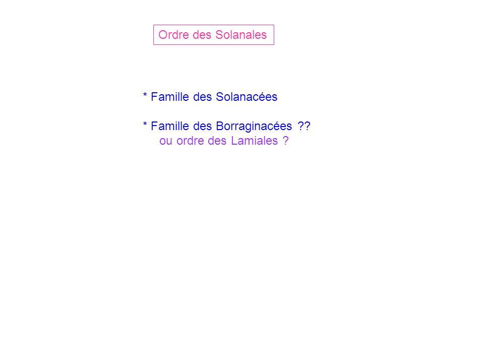 Ordre des Solanales * Famille des Solanacées * Famille des Borraginacées ou ordre des Lamiales