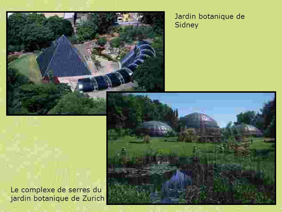Jardin botanique de Sidney