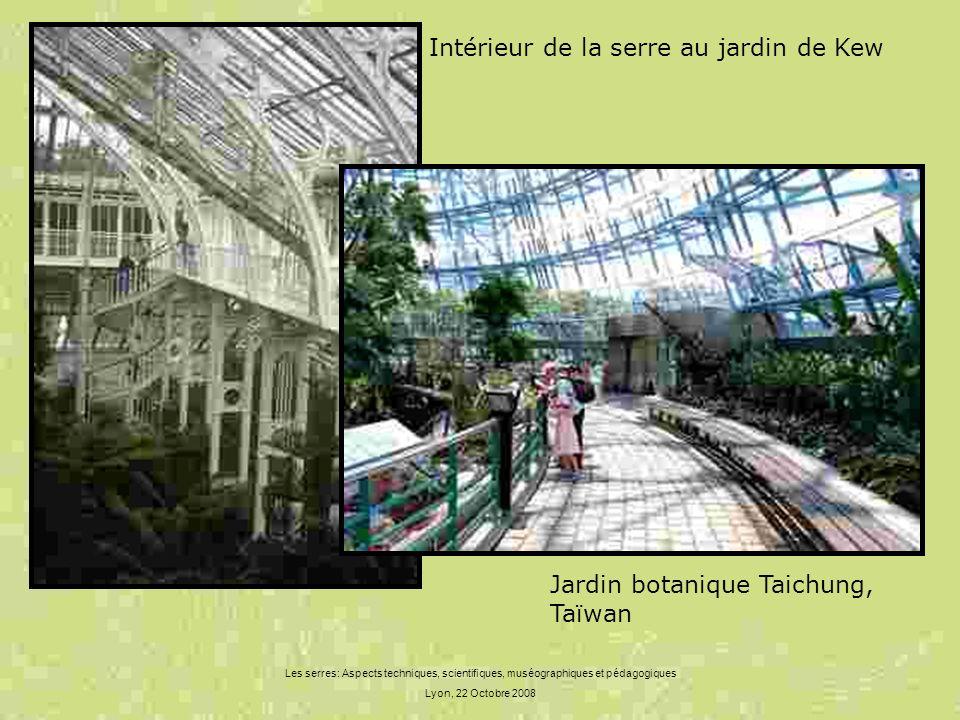 Intérieur de la serre au jardin de Kew