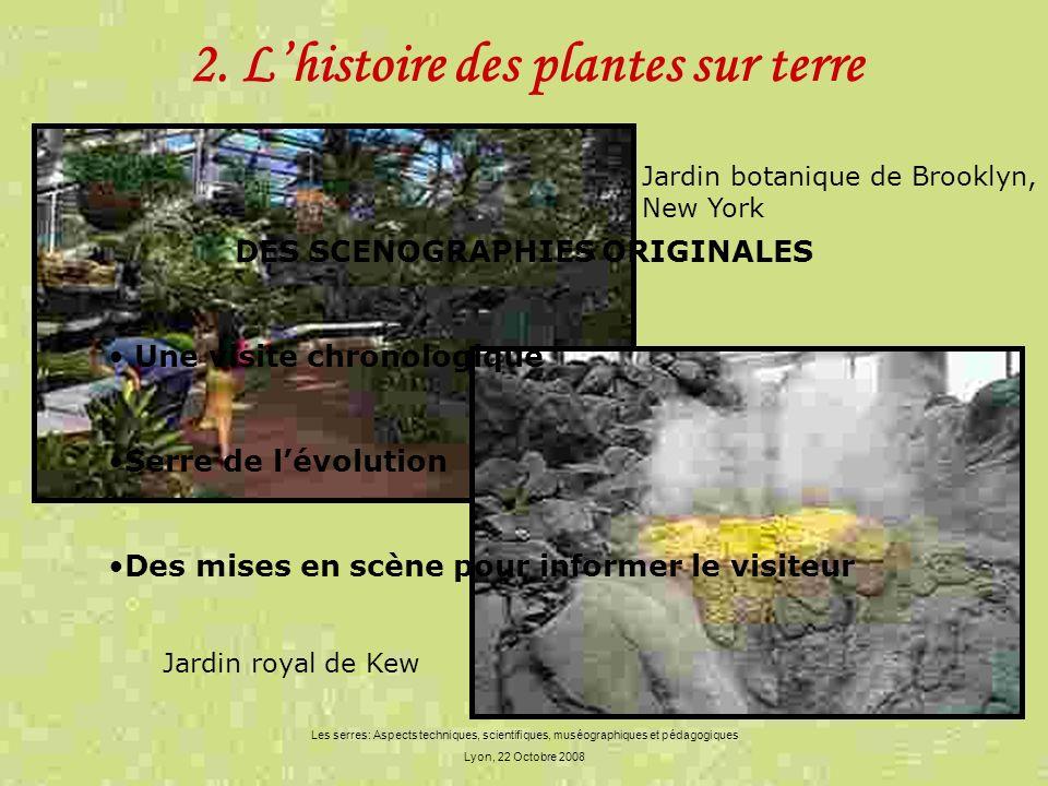 2. L'histoire des plantes sur terre