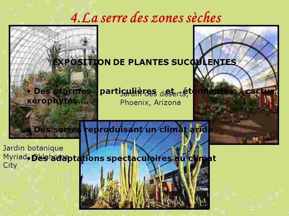 4.La serre des zones sèches