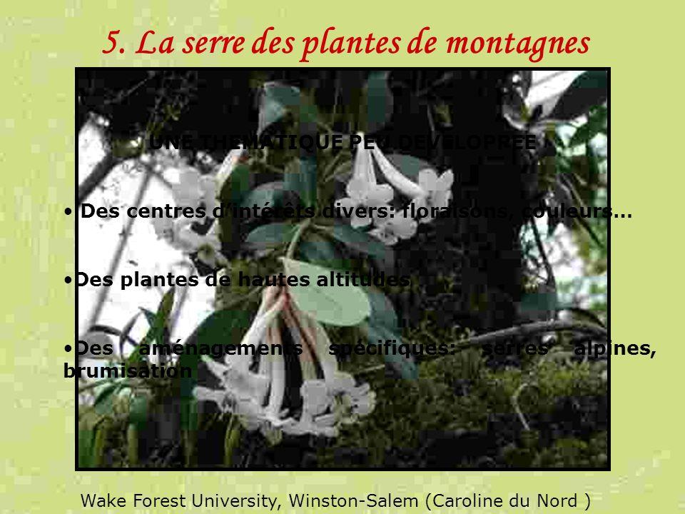 5. La serre des plantes de montagnes