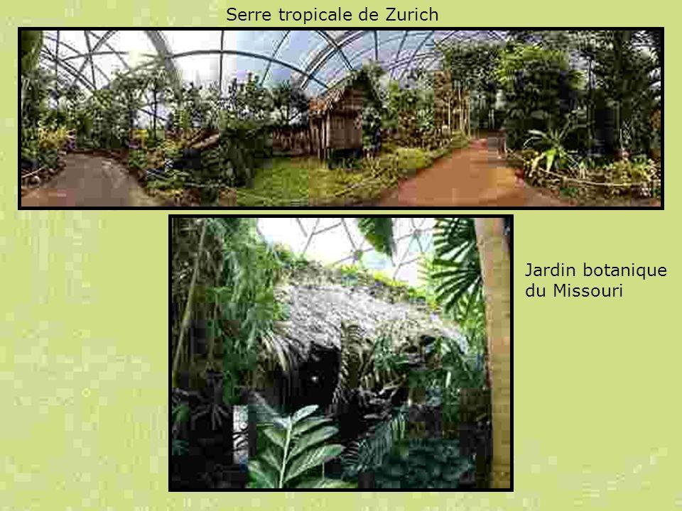 Serre tropicale de Zurich