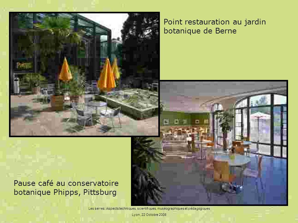 Point restauration au jardin botanique de Berne