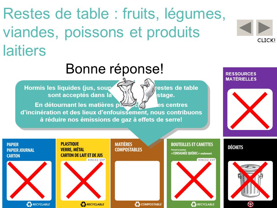 Restes de table : fruits, légumes, viandes, poissons et produits laitiers