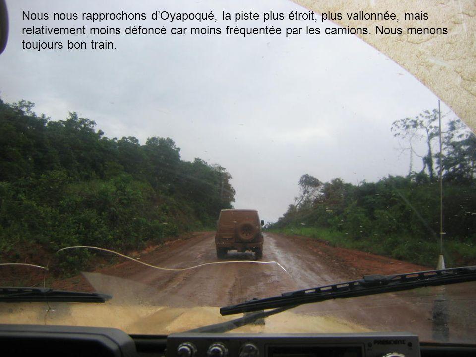 Nous nous rapprochons d'Oyapoqué, la piste plus étroit, plus vallonnée, mais relativement moins défoncé car moins fréquentée par les camions.