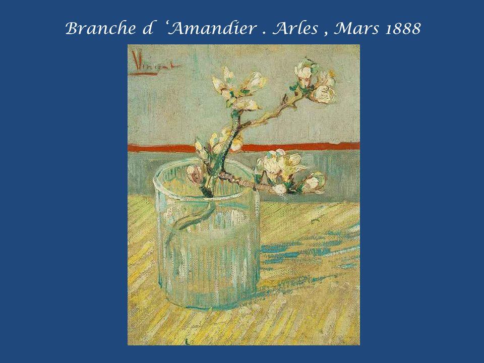 Branche d 'Amandier . Arles , Mars 1888