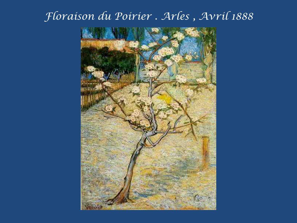 Floraison du Poirier . Arles , Avril 1888