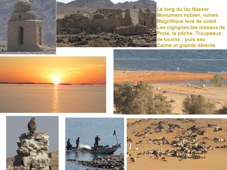 Le long du lac Nasser Monument nubien, ruines. Magnifique levé de soleil. Les cigognes:les oiseaux de.