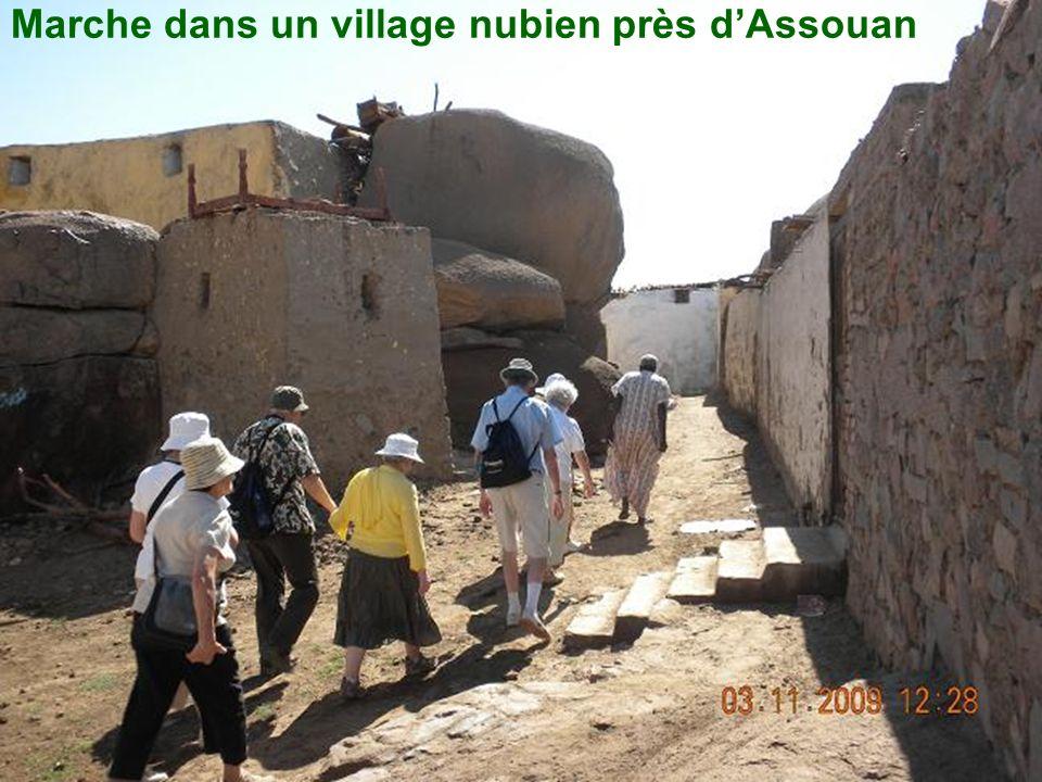 Marche dans un village nubien près d'Assouan