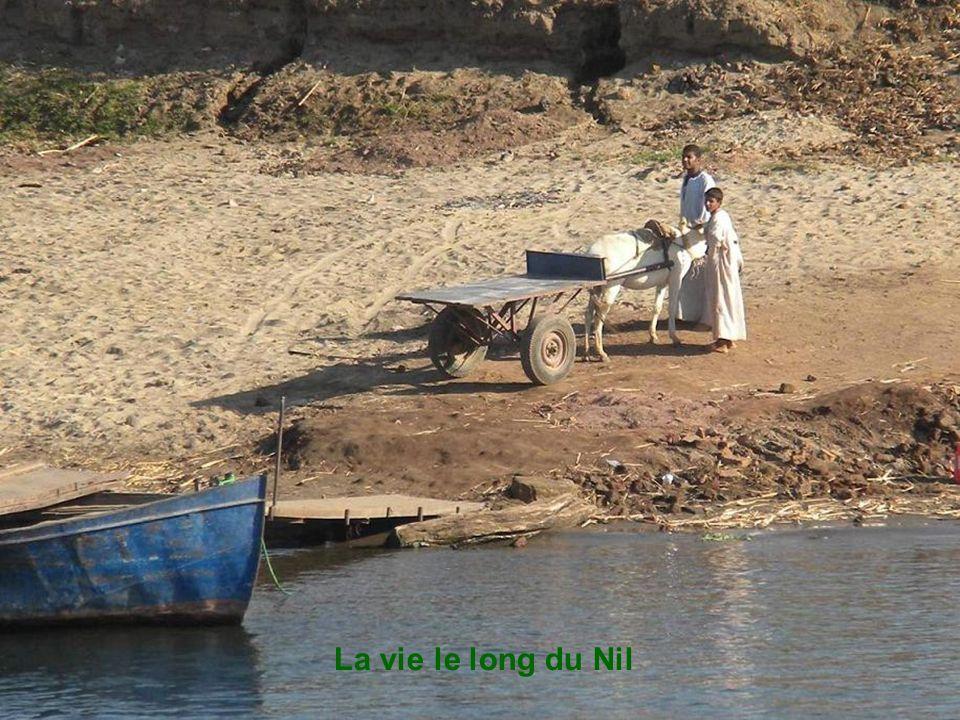 La vie le long du Nil