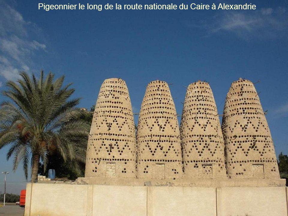 Pigeonnier le long de la route nationale du Caire à Alexandrie