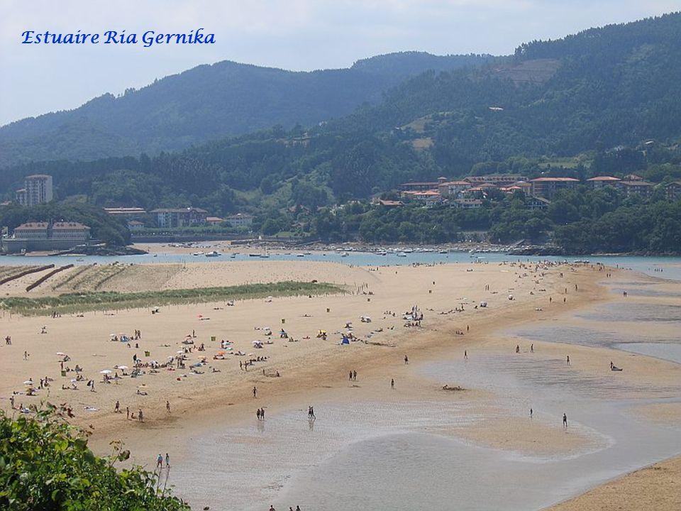 Estuaire Ria Gernika