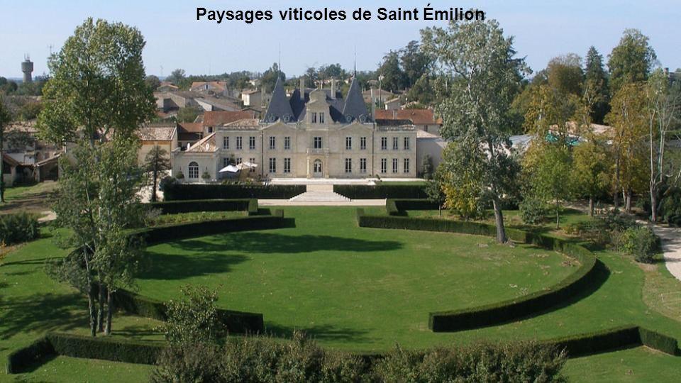 Paysages viticoles de Saint Émilion