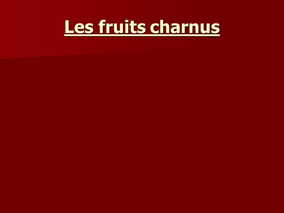 Les fruits charnus