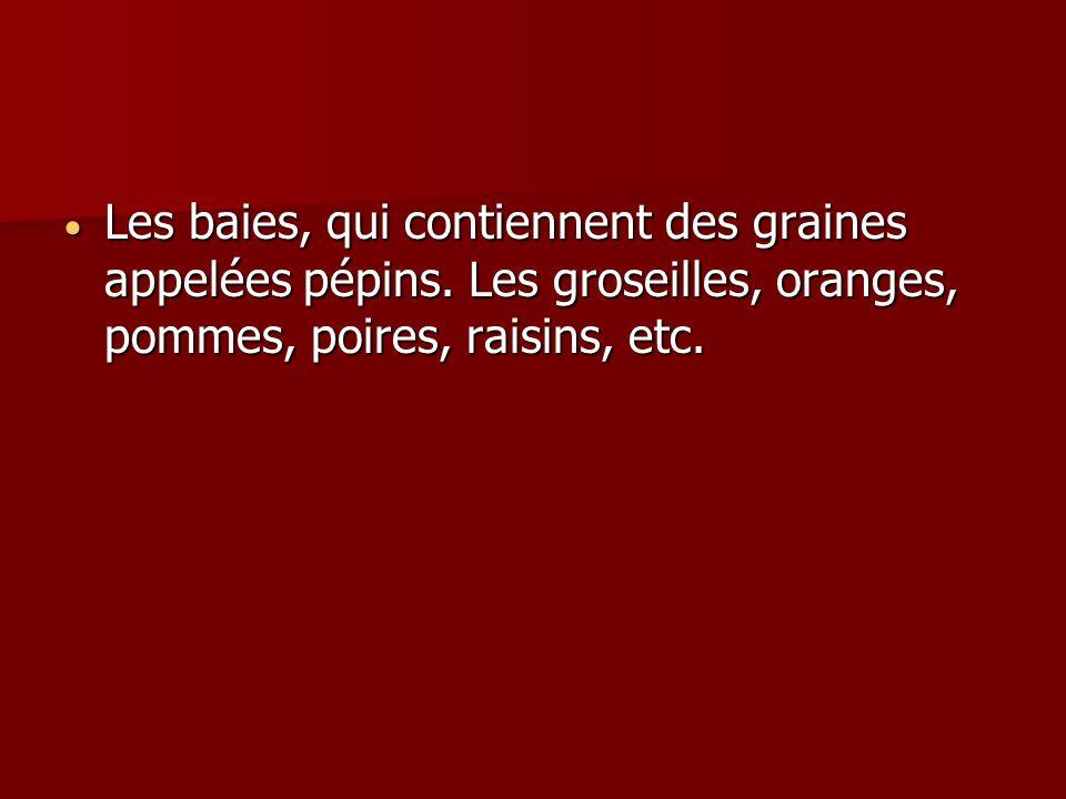 Les baies, qui contiennent des graines appelées pépins