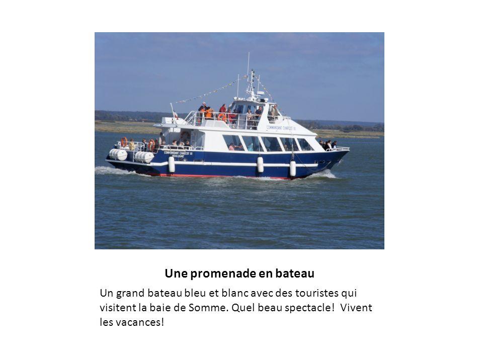 Une promenade en bateau