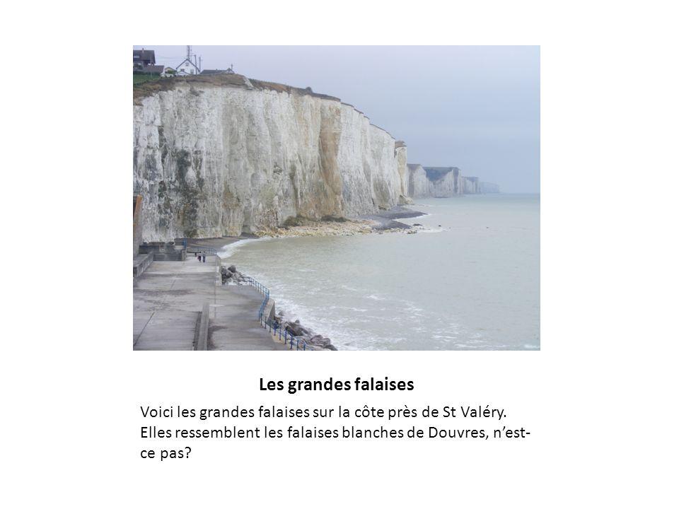Les grandes falaises Voici les grandes falaises sur la côte près de St Valéry.