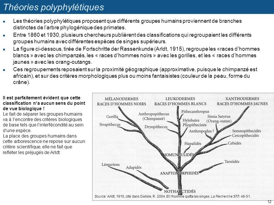Théories polyphylétiques