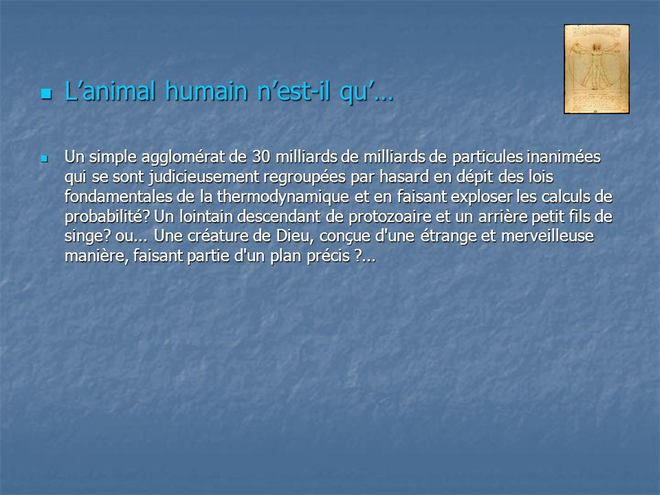 L'animal humain n'est-il qu'…