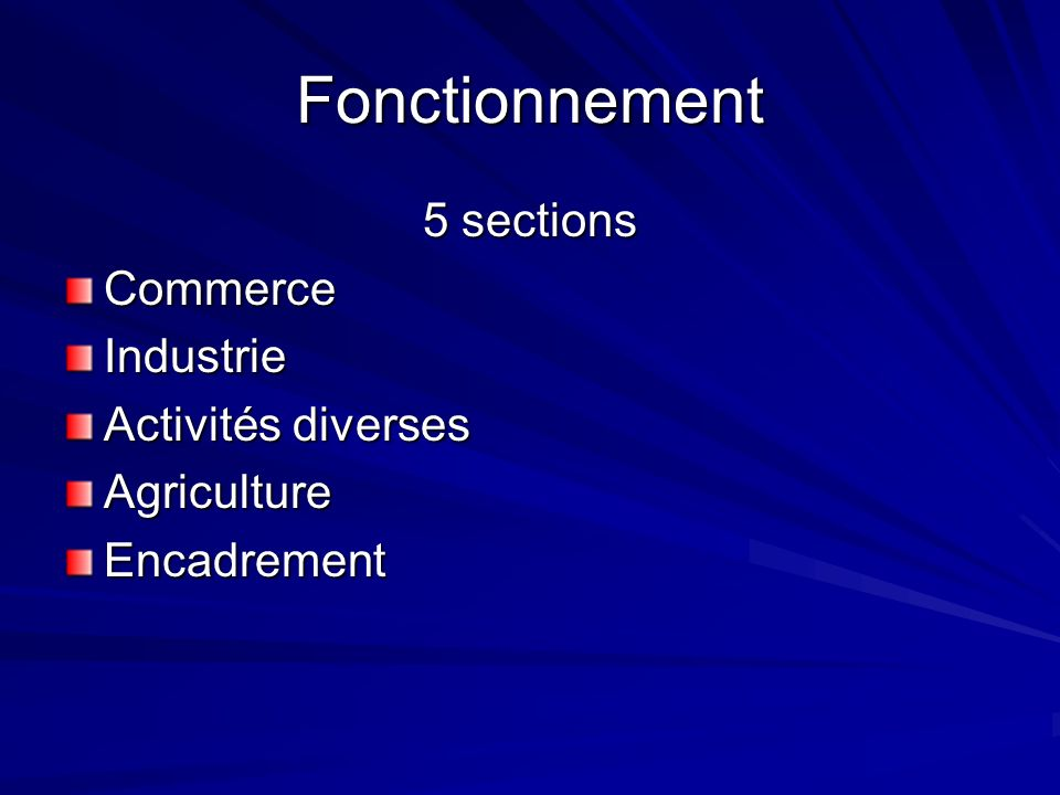 Fonctionnement 5 sections Commerce Industrie Activités diverses