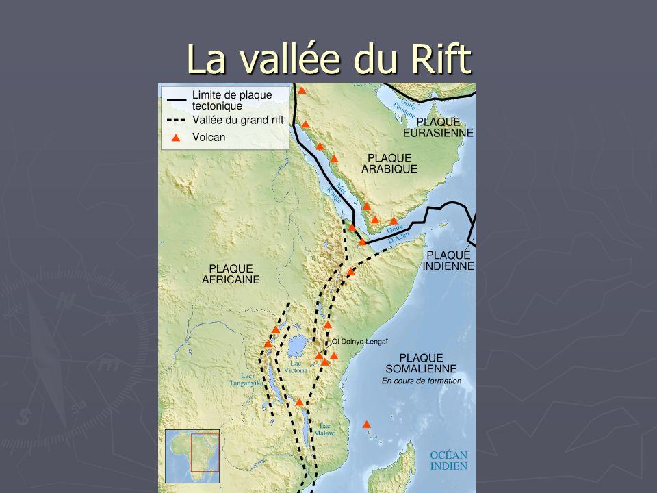 La vallée du Rift