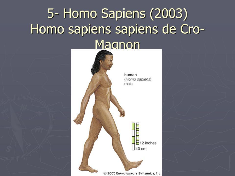 5- Homo Sapiens (2003) Homo sapiens sapiens de Cro-Magnon