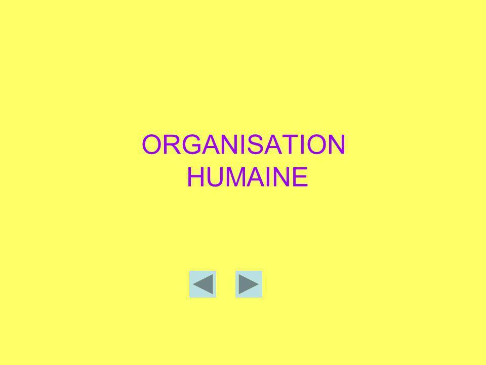 ORGANISATION HUMAINE