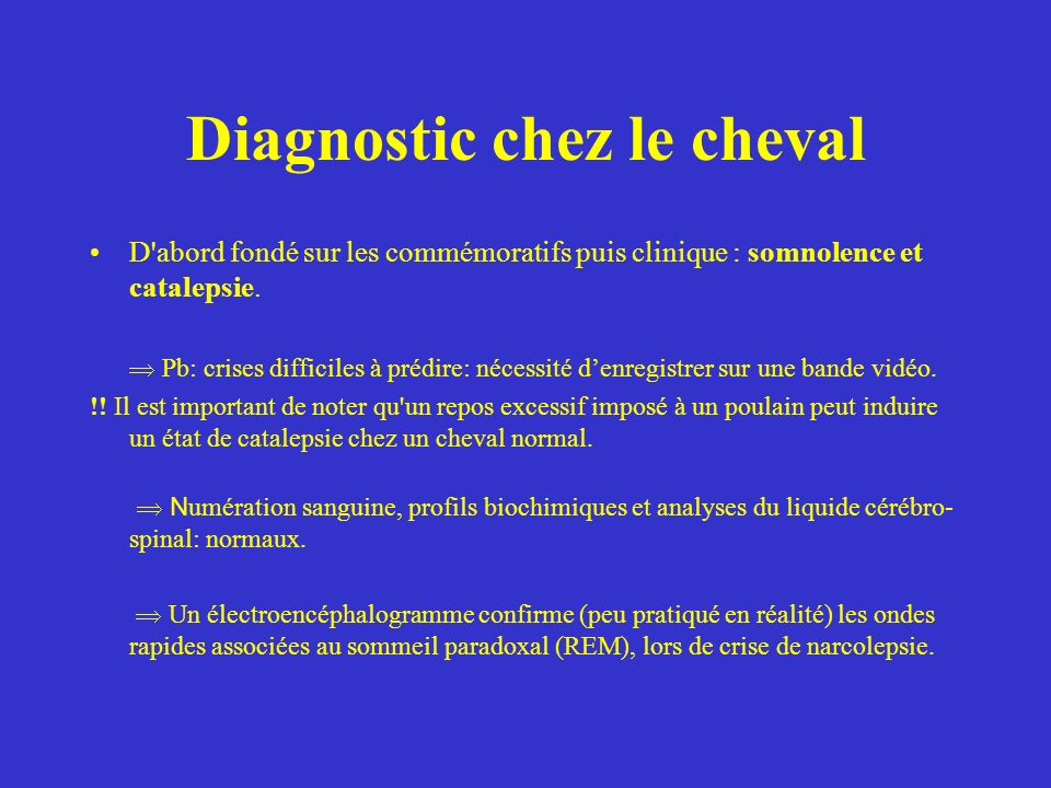 Diagnostic chez le cheval