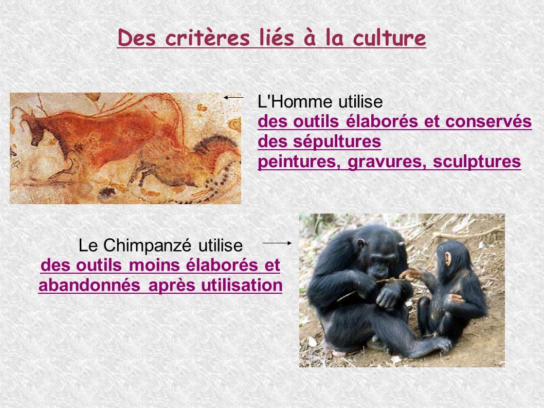 Des critères liés à la culture