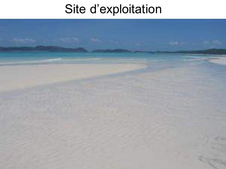 Site d'exploitation