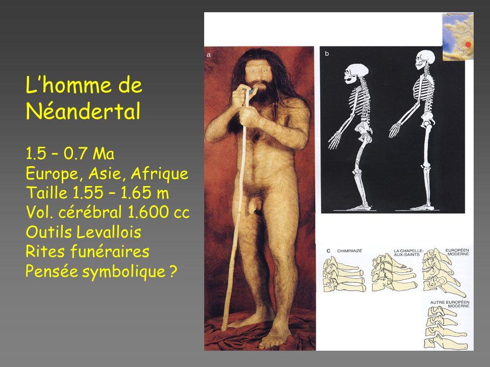 L'homme de Néandertal 1.5 – 0.7 Ma Europe, Asie, Afrique