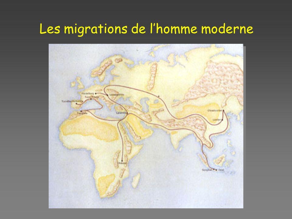 Les migrations de l'homme moderne