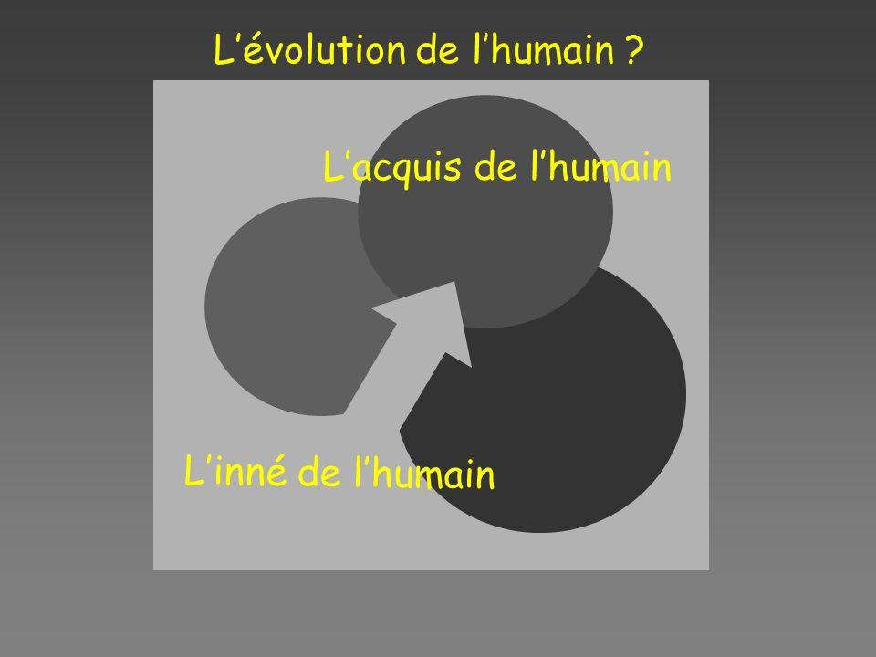 L'évolution de l'humain