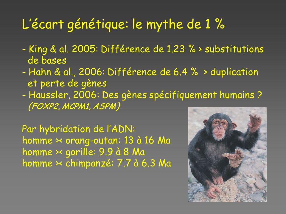 L'écart génétique: le mythe de 1 %