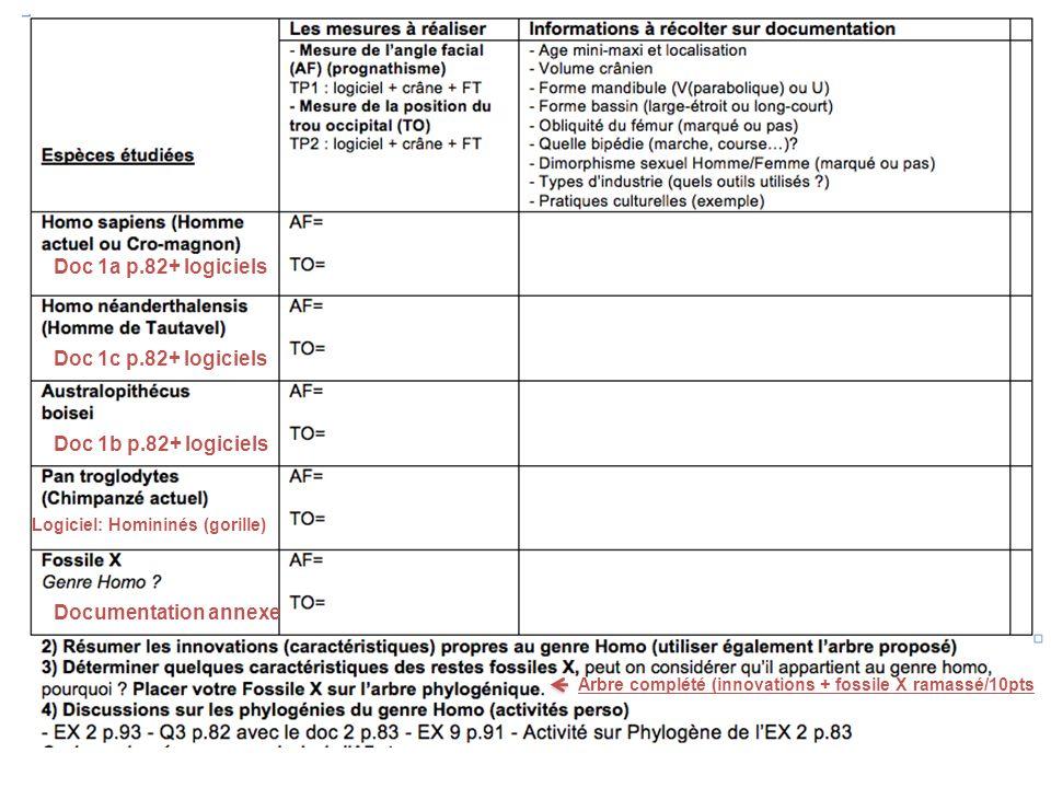 Doc 1a p.82+ logiciels Doc 1c p.82+ logiciels Doc 1b p.82+ logiciels