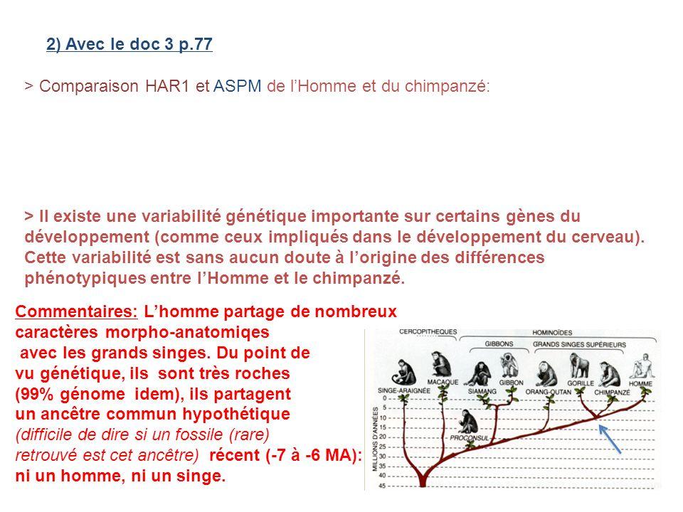 2) Avec le doc 3 p.77 > Comparaison HAR1 et ASPM de l'Homme et du chimpanzé: