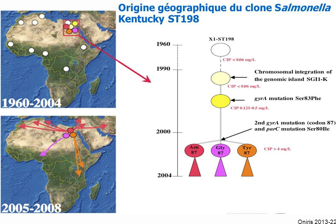 Origine géographique du clone Salmonella Kentucky ST198