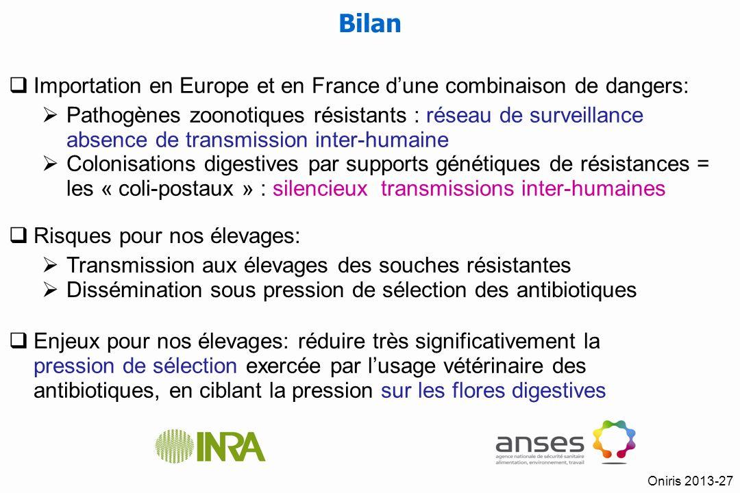 Bilan Importation en Europe et en France d'une combinaison de dangers: