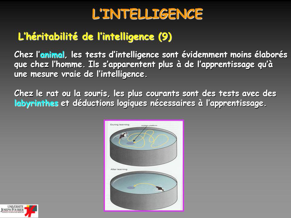 L'INTELLIGENCE L'héritabilité de l'intelligence (9)