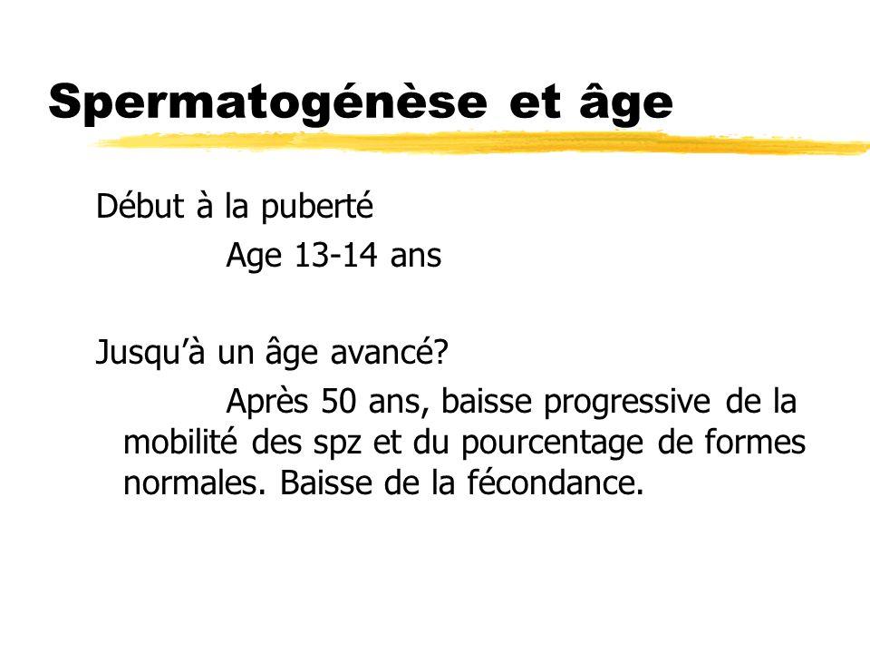 Spermatogénèse et âge Début à la puberté Age 13-14 ans