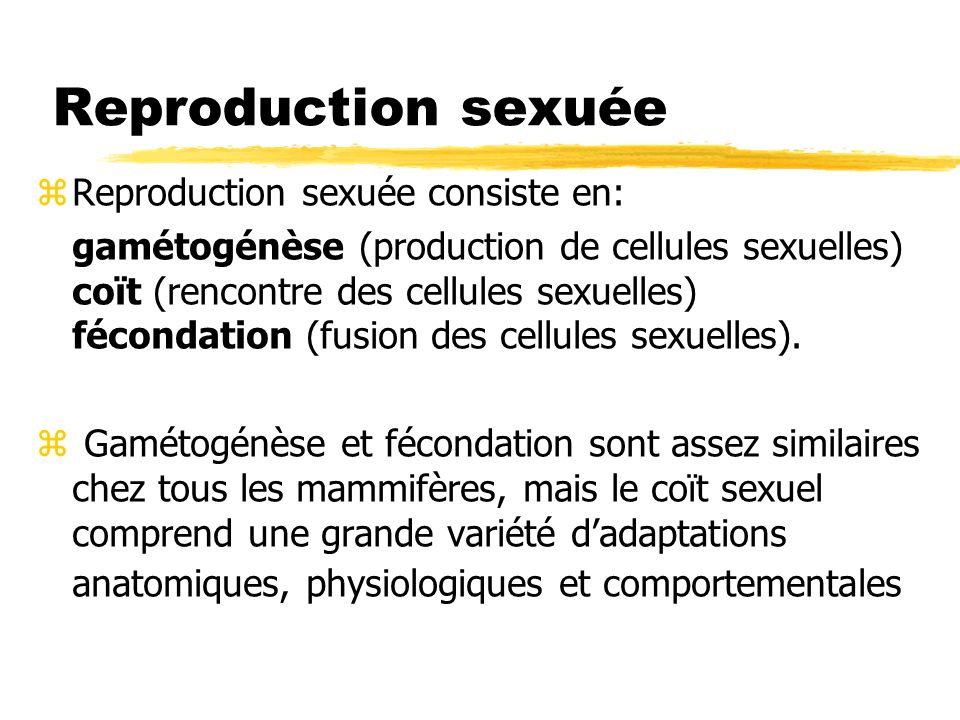 Reproduction sexuée Reproduction sexuée consiste en: