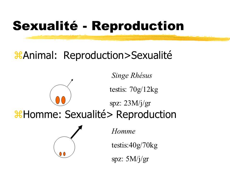 Sexualité - Reproduction