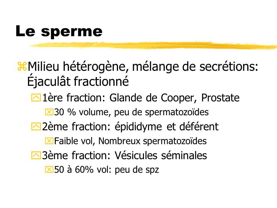Le sperme Milieu hétérogène, mélange de secrétions: Éjaculât fractionné. 1ère fraction: Glande de Cooper, Prostate.