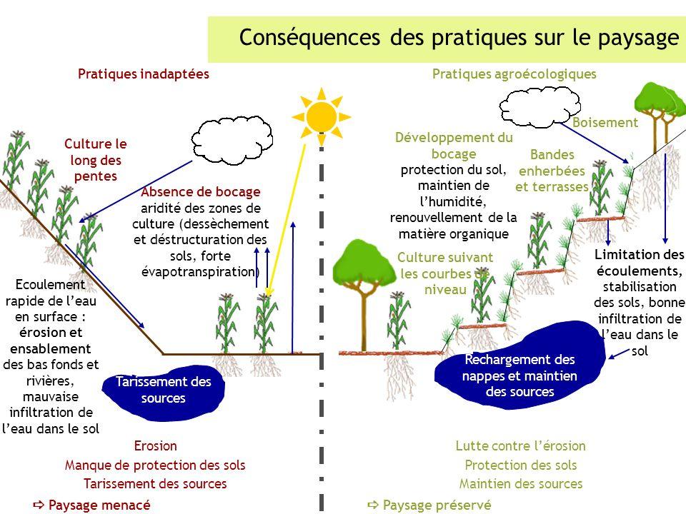 Conséquences des pratiques sur le paysage