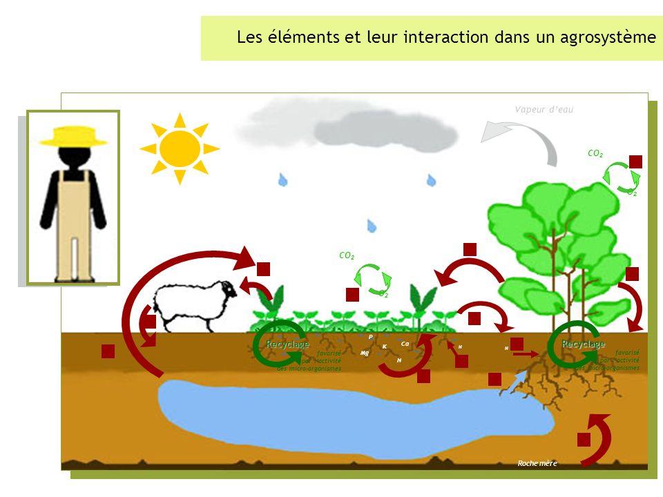 Les éléments et leur interaction dans un agrosystème