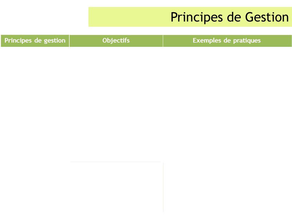 Principes de Gestion Principes de gestion