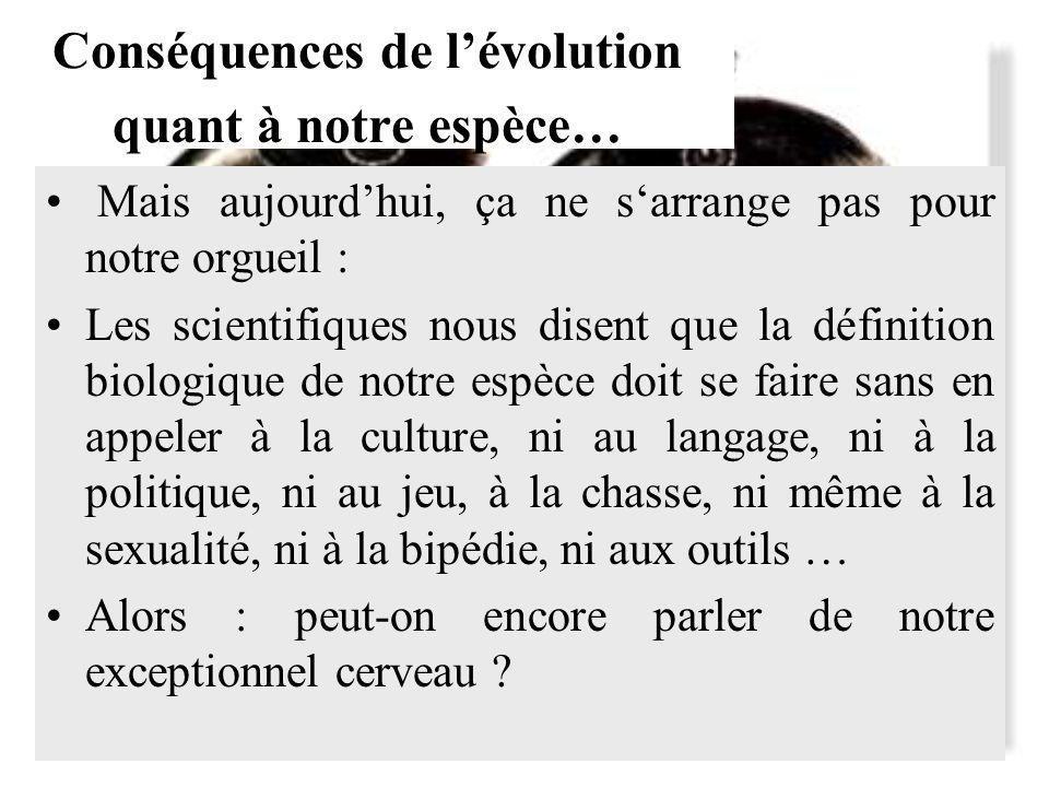 Conséquences de l'évolution quant à notre espèce…